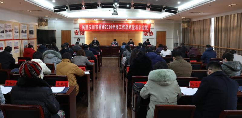 民盟安阳市委会2020年度工作总结暨表彰会议圆满召开